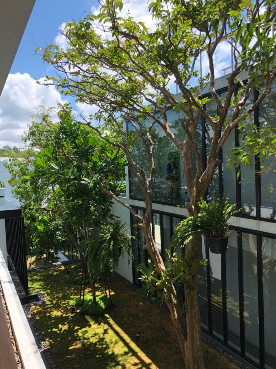 Outdoor view of Architect House with Breezway Louvres